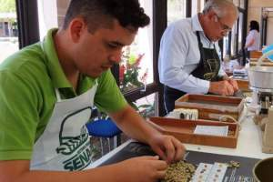 Oportunidade: Agenda de cursos do Senar Minas